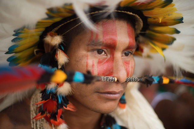 A Brazilian indigenous man of the Rikbaktsa tribe watches the bow and arrow competition during the XII International Games of Indigenous Peoples in Cuiaba, Mato Grosso state, Brazil on November 12, 2013. (Photo by Christophe Simon/AFP Photo)