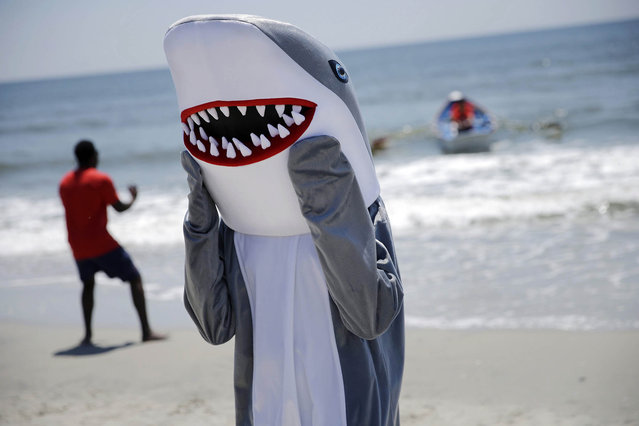 A person is dressed as a shark character stands on the beach near the Boardwalk as Atlantic City prepares to kick off the Memorial Day weekend and the start of the summer beach season Friday, May 22, 2015, in Atlantic City, N.J. (Photo by Mel Evans/AP Photo)