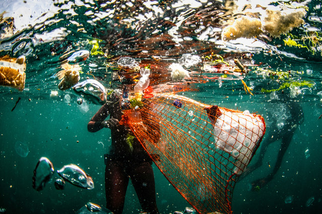 Trash by Sebnem Coskun, Istanbul, Turkey. Underwater cleaning in the Bosphorus as part of the Zero Waste Blue project. (Photo by Sebnem Coskun/CIWEM Environmental Photographer of the Year 2019)