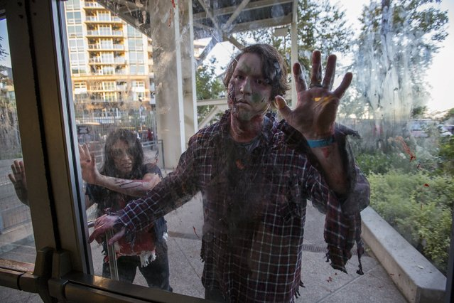 People dressed like zombies take part in The Walking Dead Escape experience at Petco Park during the 2015 Comic-Con International Convention in San Diego, California July 10, 2015. (Photo by Mario Anzuoni/Reuters)
