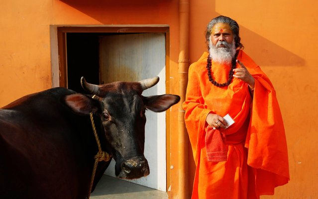 A Hindu holy man Mahant Narendragiri displays the indelible ink mark on his finger after casting his vote, as a cow stands beside him outside a polling station in Allahabad, in the northern Indian state of Uttar Pradesh, Wednesday, May 7, 2014. The multiphase voting across the country runs until May 12, with results for the 543-seat lower house of parliament expected on May 16. (Photo by Rajesh Kumar Singh/AP Photo)