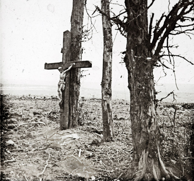 An archive picture taken shows a statue of Christ on the cross on a tree at Fricourt on the Somme front in France October 1916. (Photo by Collection Odette Carrez/Reuters)