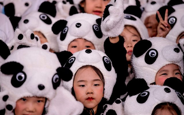 Children wearing a panda costume group together during the official reveal of the mascots for the Beijing 2022 Winter Olympic and Paralympic Games at Shougang Ice Hockey Arena, Shougang Park, Shijingshan District, Beijing in September 17, 2019. (Photo by Noel Celis/AFP Photo)