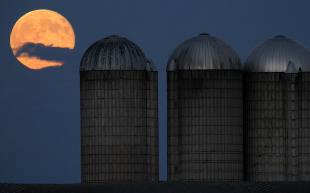 A not so blue, Blue Moon rises over a set of silos south of Marshfield, Wis., Friday, July 31, 2015. A second full moon in a calendar month is commonly called a Blue Moon and this is the second full moon in July. (Photo by Dan Young/The Marshfield News-Herald via AP Photo)