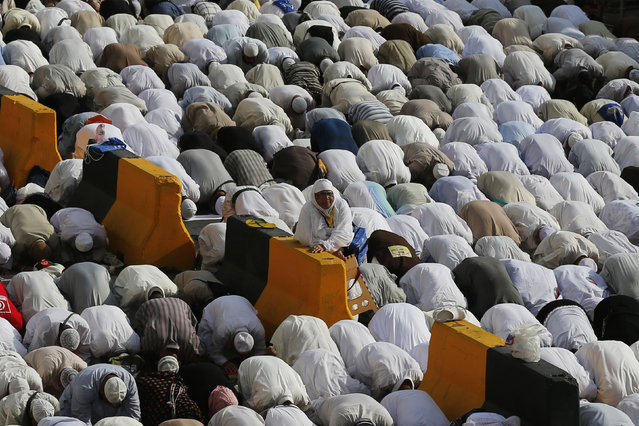 Muslim pilgrims pray at the Grand Mosque during the annual Hajj pilgrimage in Mecca September 27, 2014. (Photo by Muhammad Hamed/Reuters)