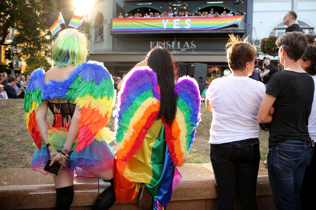 Crowds supporting the Same s*x Marriage Survey listen to politicians and advocates at Taylor Square in the heart of Sydney's gay precinct on November 15, 2017 in Sydney, Australia. (Photo by James Alcock/Getty Images)