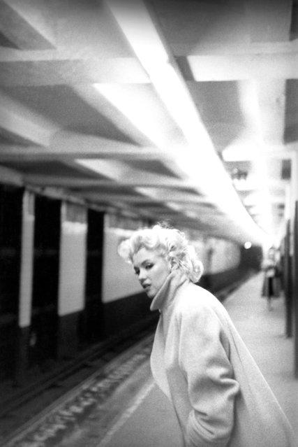 Marilyn Monroe by Ed Feingersh, 1955