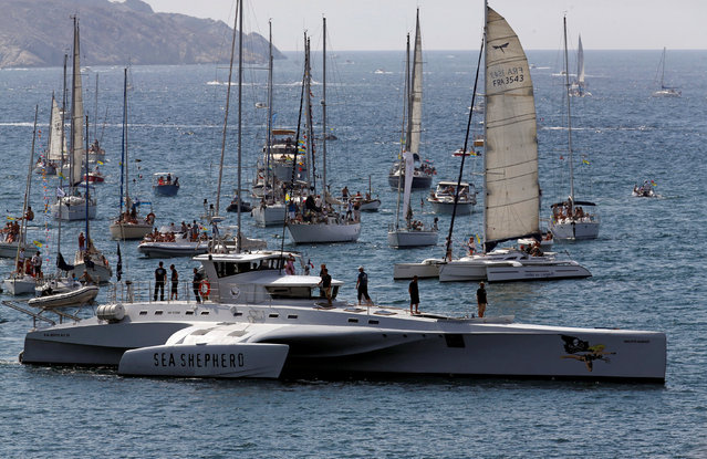 "Trimaran "" Brigitte Bardot"" of the Sea Shepherd Conservation Society sails off Marseille during the Great Maritime Parade, France, September 4, 2016. (Photo by Jean-Paul Pelissier/Reuters)"