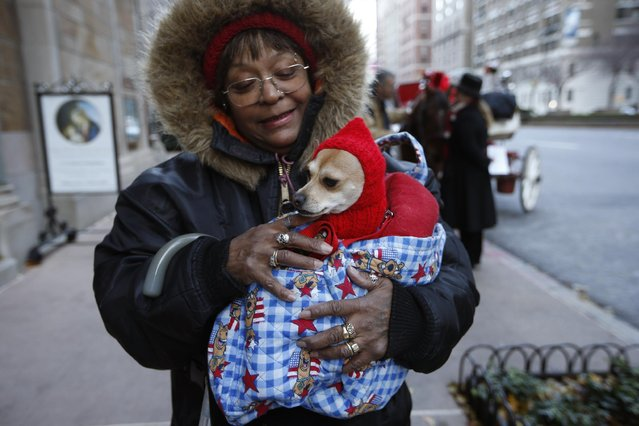 Joyce Forbes holds her pet Chihuahua Lulu, after the 6th annual Blessing of the Animals at Christ Church of Manhattan in New York, Sunday, December 7, 2014. (Photo by Kathy Willens/AP Photo)