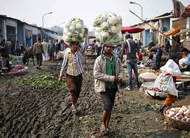 Vendors carry cauliflower for sale at a vegetable wholesale market in New Delhi December 15, 2014. India's wholesale price inflation eased for a sixth straight month in November to its lowest in nearly 5-1/2 years, mainly driven by a sharp fall in fuel prices, government data showed on Monday. (Photo by Anindito Mukherjee/Reuters)