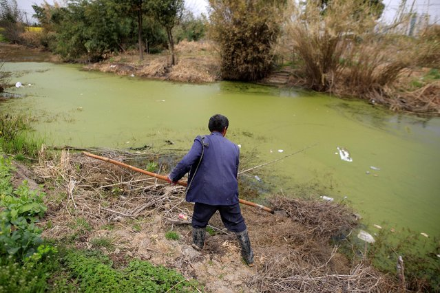 A farmer works on a polluted river in Shanghai, China March 21, 2016. (Photo by Aly Song/Reuters)