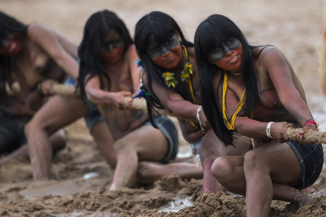Mamainde Indian women participate in a tug of war competition during the indigenous games in Cuiaba, Brazil, Tuesday, November 12, 2013. (Photo by Felipe Dana/AP Photo)
