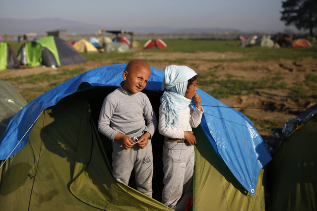 Children stand in their tent at a makeshift camp for migrants and refugees at the Greek-Macedonian border near the village of Idomeni, Greece, March 31, 2016. (Photo by Marko Djurica/Reuters)