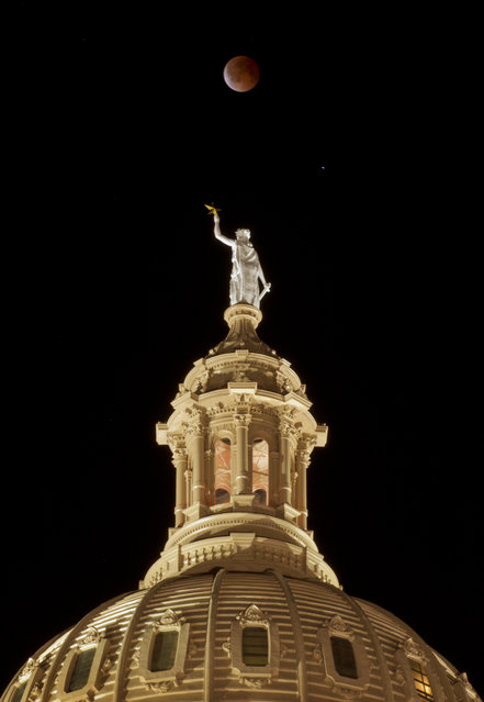 The moon glows a red hue over the Goddess of Liberty statue atop the Capitol in Austin, Texas, during a total lunar eclipse Tuesday, April 15, 2014. Tuesday's eclipse is the first of four total lunar eclipses that will take place between 2014 to 2015. (Photo by Jay Janner/AP Photo/Austin American-Statesman)