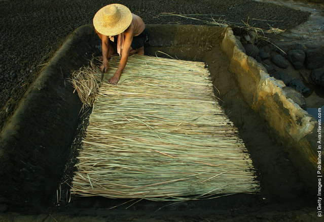 A villager prepares straw at ancient salt fields in Yantian Village on Hainan Island, China. The straw and bamboo mats will be used to filter dried tidewater mud and seawater in the process of creating thick brine which will be poured into troughs to be evaporated under the sun to make salt. Yantian is a small fishing village on the western coast of Hainan Island. Its ancient salt fields are more than 1,000 troughs chiseled out of volcanic rock. During the Tang Dynasty (618-907), villagers began to chisel volcanic rocks on the seashore