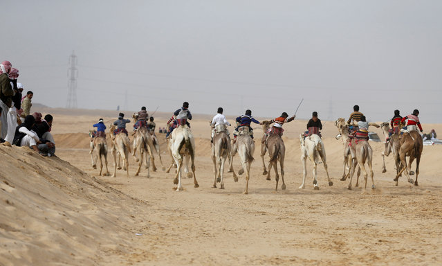 Jockeys, most of whom are children, compete on their mounts during the International Camel Racing festival at the Sarabium desert in Ismailia, Egypt, March 21, 2017. (Photo by Amr Abdallah Dalsh/Reuters)