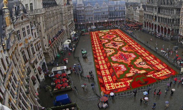 A giant flower carpet is seen at Brussels' Grand Place, August 14, 2014. This year's theme for the flower carpet is Turkey and around 750,000 begonias were needed to create the 1,800 square meter flower carpet design, according to the event organisers. (Photo by Yves Herman/Reuters)