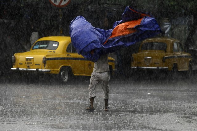 A man uses a plastic sheet to protect himself from a heavy monsoon rain shower in Kolkata August 31, 2014. This year's monsoon started on a weak note and had a poor run until late July, when rains revived in northwest and central India. (Photo by Rupak De Chowdhuri/Reuters)