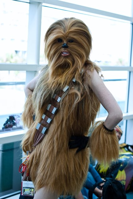 Female Chewbacca. (Photo by Sean Doorly)