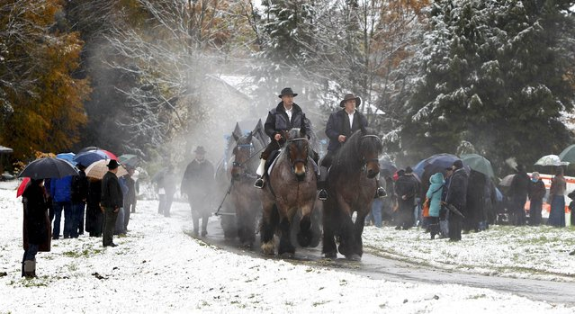 Farmers in traditional Bavarian costumes steer a wooden carriage on the way to the chapel on the Kalvarienberg in Bad Toelz, during the Leonhard procession November 6, 2014. (Photo by Michaela Rehle/Reuters)