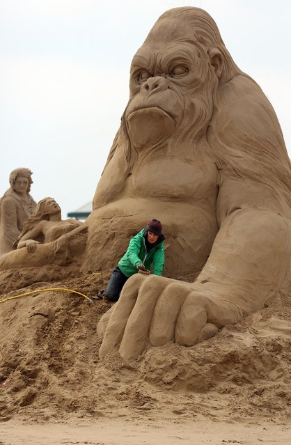 Sand sculptor Helena Bangert (C), from Holland works on a sand sculpture of King Kong as pieces are prepared as part of this year's Hollywood themed annual Weston-super-Mare Sand Sculpture festival on March 26, 2013 in Weston-Super-Mare, England. Due to open on Good Friday, currently twenty award winning sand sculptors from across the globe are working to create sand sculptures including Harry Potter, Marilyn Monroe and characters from the Star Wars films as part of the town's very own movie themed festival on the beach.  (Photo by Matt Cardy)