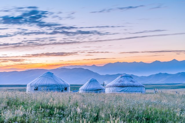 Three Mongolian yurts on the Bayinbuluke grassland in China are pictured in the tranquil morning light. (Photo by Jaris Ho/Getty Images)