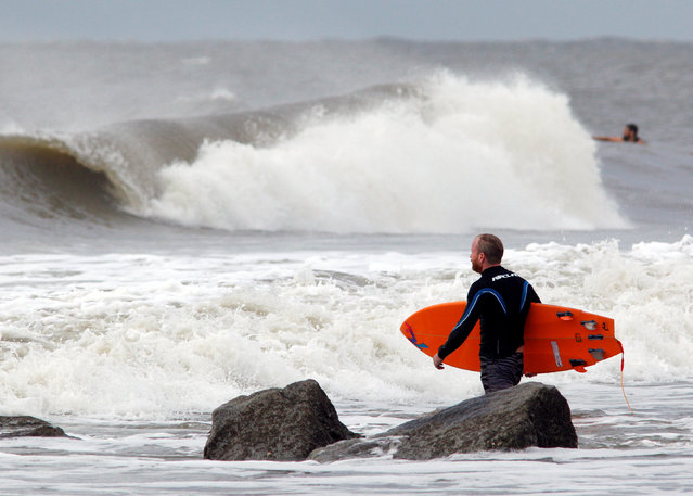 A surfer makes his way out into the waves as the winds and surf begin to intensify ahead of the arrival of Hurricane Matthew, in Folly Beach, South Carolina, U.S. October 6, 2016. (Photo by Jonathan Drake/Reuters)