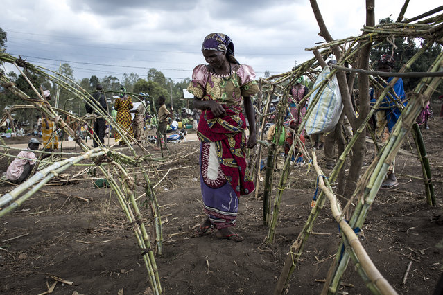 A Internally Displaced Congolese woman stands whist constructing a make shift shelter in a camp for IDP's on February 27, 2018 in Bunia, Congo. Twenty-three people have been killed in renewed clashes between ethnic groups in the Democratic Republic of Congo's troubled east, according to an official toll Wednesday. (Photo by John Wessels/AFP Photo)