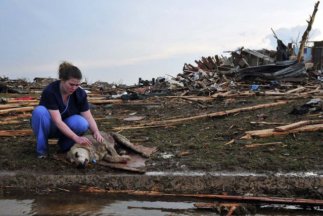 Tiffany Bauman comforts a dying dog injured by Monday's tornado in the neighborhood of  Westmoor, near Moore. (Photo by Nick Oxford/The New York Times)