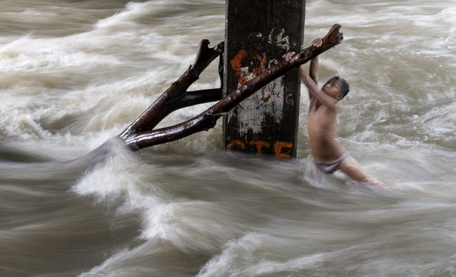 A boy holds a partially submerged branch as he plays in a swollen river caused by heavy rains under a bridge in Manila on June 11, 2018. (Photo by Noel Celis/AFP Photo)