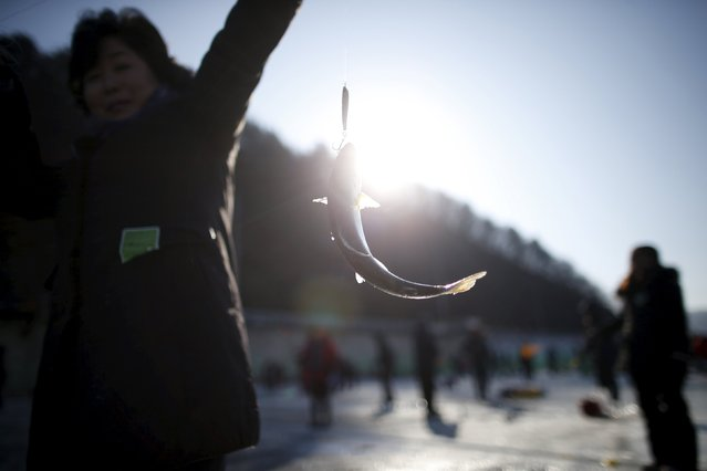 A woman poses for photographs with a trout on a frozen river in Hwacheon, south of the demilitarized zone (DMZ) separating the two Koreas, January 9, 2016. (Photo by Kim Hong-Ji/Reuters)