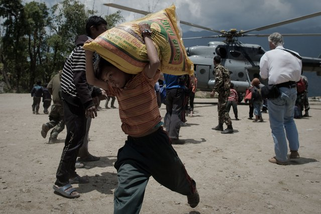 A Nepalese boy carrying a bag of rice out of an Indian Air Force Helicopter, bringing relief food to the village of Barpak in north central Nepal, nine days after a 7.8 magnitude earthquake struck the Himalayan nation on April 25. (Photo by Nicolas Asfouri/AFP Photo)