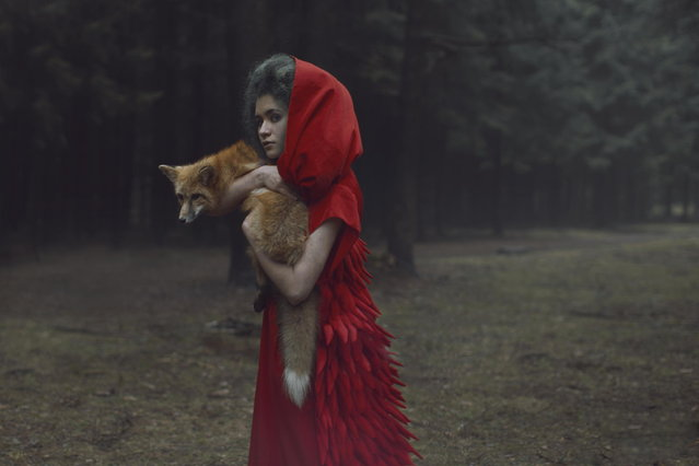Russian photographer takes stunning images with real animals. (Photo by Katerina Plotnikova)