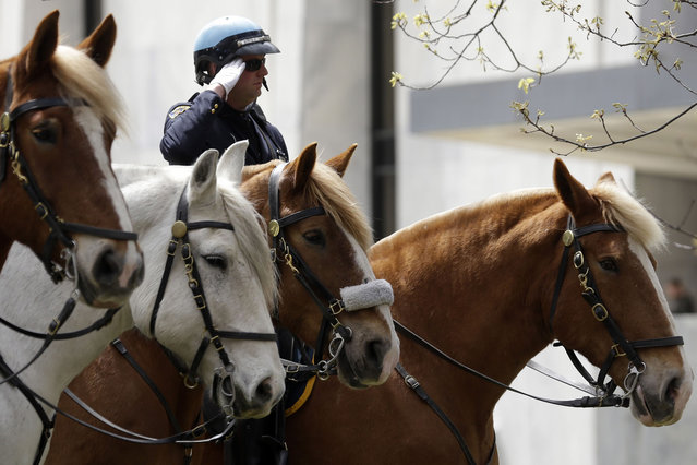 An Albany Police Department mounted unit officer salutes during a ceremony at the State of New York Police Officers Memorial on Tuesday, May 6, 2014, in Albany, N.Y. The names of 20 police officers who died in the the line of duty were added to the memorial, including 13 who died from ground zero-related illnesses after the 9/11 attacks. (Photo by Mike Groll/AP Photo)