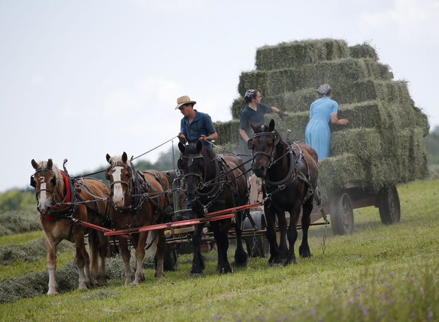 Workers bale hay at an Amish farm on Friday, July 24, 2015, in Springfield, N.Y. (Photo by Mike Groll/AP Photo)