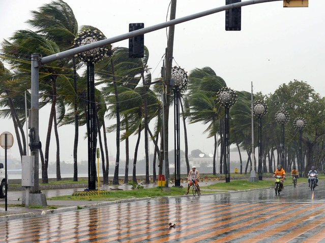 Vehicles drive along Roxas Boulevard as Typhoon Rammasun hit Metro Manila on July 16, 2014. Typhoon Rammasun shut down the Philippine capital on July 16 as authorities said the first major storm of the country's brutal rainy season claimed at least four lives and forced hundreds of thousands to evacuate. (Photo by Jay Directo/AFP Photo)