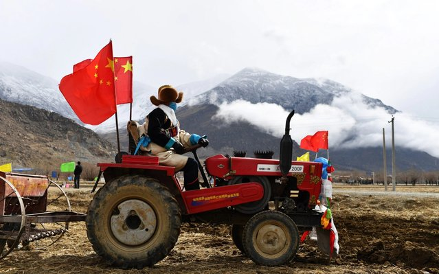 A villager attends a spring ploughing ceremony in Jiaru Village, Gurong Town, Lhasa, southwest China's Tibet Autonomous Region, March 16, 2020. Traditional spring ploughing ceremonies took place in Tibet's major cultivation areas on Monday to pray for a year with good harvests. (Photo by Zhan Yan/Xinhua News Agency)