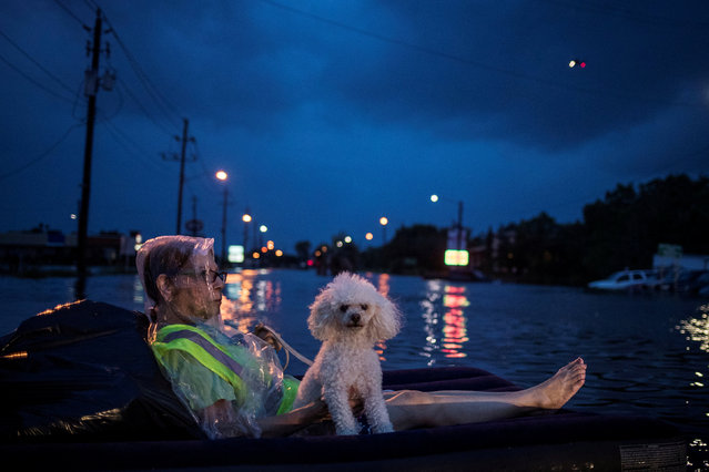 A rescue helicopter hovers in the background as an elderly woman and her poodle use an air mattress to float above flood waters from Tropical Storm Harvey while waiting to be rescued from Scarsdale Boulevard in Houston, Texas, August 27, 2017. (Photo by Adrees Latif/Reuters)