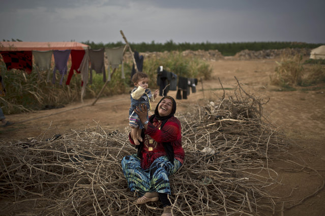 Syrian refugee Fatima Jassim, 40, plays with her 7-month-old daughter Marwa while sitting on a pile of wood to be used for cooking, outside their tent at an informal tented settlement near the Syrian border on the outskirts of Mafraq, Jordan, Monday, October 19, 2015. (Photo by Muhammed Muheisen/AP Photo)