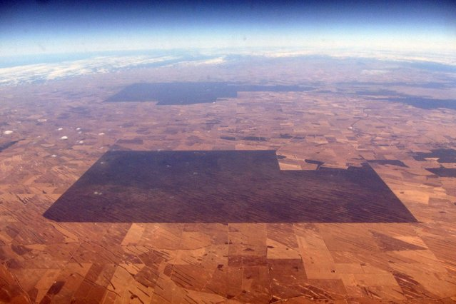 An area of vegetation can be seen amongst drought effected farmland in South Australia, November 12, 2015. (Photo by David Gray/Reuters)