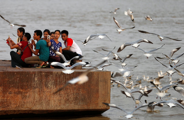 People take a selfie as the feed seagulls on the bank of the Yangon River in Yangon, Myanmar April 27, 2017. (Photo by Soe Zeya Tun/Reuters)