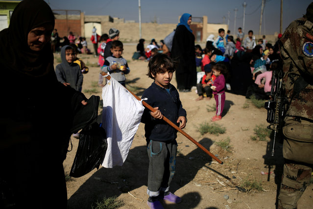 A boy, who just fled the Samah district of eastern Mosul, carries a white flag as he is waiting for his father, who is going through interrogations to ensure he does not belong to the Islamic State group, at the Iraqi Special Forces checkpoint in Kokjali, east of Mosul, Iraq November 5, 2016. (Photo by Zohra Bensemra/Reuters)