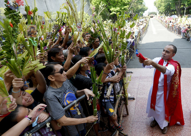 Devotees wave palm fronds as they are blessed by a Roman Catholic priest with holy water in observance of Palm Sunday at Baclaran church in suburban Paranaque city, southeast of Manila, Philippines, Sunday, March 25, 2018. Roman Catholics all over the world observe Palm Sunday by having palm fronds blessed by a priest to mark the entry of Jesus Christ into Jerusalem. (Photo by Bullit Marquez/AP Photo)