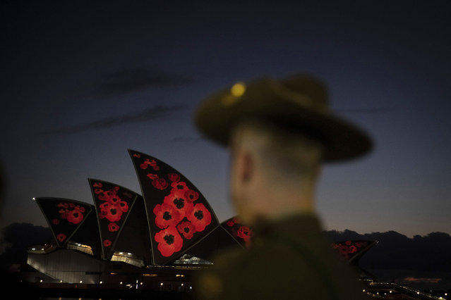 A bugler looks on as a general view is seen of poppies projected onto the sails of the Opera House on November 11, 2020 in Sydney, Australia. Remembrance Day 2020 marks 102 years since the Armistice that ended the First World War on 11 November 1918. Almost 62,000 Australians died fighting in four years of global conflict. On this day Australians observe one minute's silence at 11 am to honour those who have served and those who have died in war and on peacekeeping and humanitarian operations. (Photo by Jenny Evans/Getty Images)