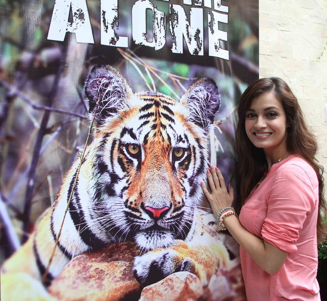 """Bollywood actress, model and producer Dia Mirza at the launch of """"Leave me alone"""" campaign, at the Mumbai Press Club on July 26, 2013. (Photo by Kemmannu News Network)"""