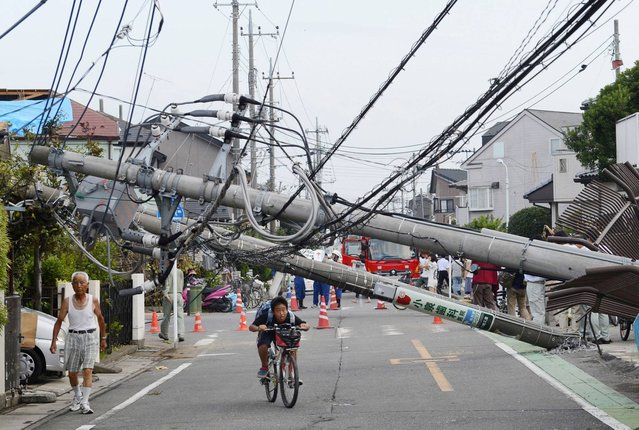 Utility poles fall over a road after a tornado in Koshigaya city, Saitama Prefecture, north of Tokyo, Monday, September 2, 2013. According to local reports, dozens of people were injured by the disaster. (Photo by AP Photo/Kyodo News)