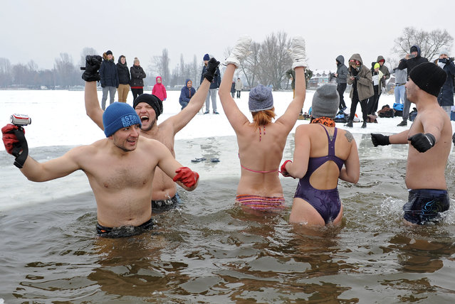 Ice swimmers enjoy a bath in the icy water of the Zegrzynski lake in Nieporet near  Warsaw, Poland, Wednesday, January 6, 2016, with the temperature minus 6 degrees Celsius (21.2 Fahrenheit). (Photo by Alik Keplicz/AP Photo)