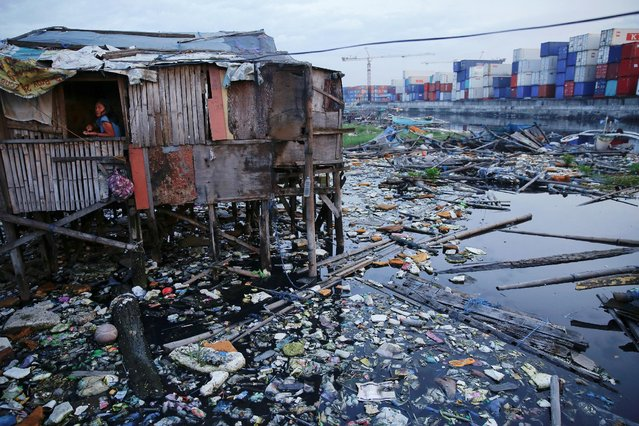 A woman looks from inside her home near C-3 bridge in North Bay Boulevard South (NBBS), a Navotas City district of slums and waterways with a high number of drug war deaths, in Manila, Philippines November 3, 2016. (Photo by Damir Sagolj/Reuters)