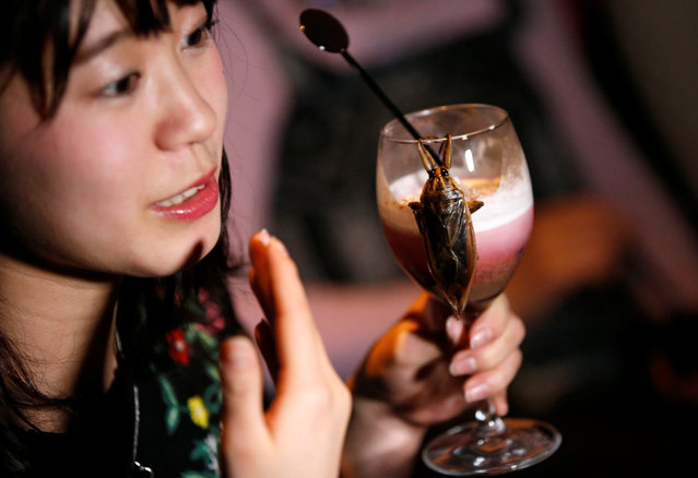 A woman looks at a cocktail with whipped cream containing juice of water bugs at a bar in downtown Tokyo, Japan, February 12, 2017. (Photo by Toru Hanai/Reuters)
