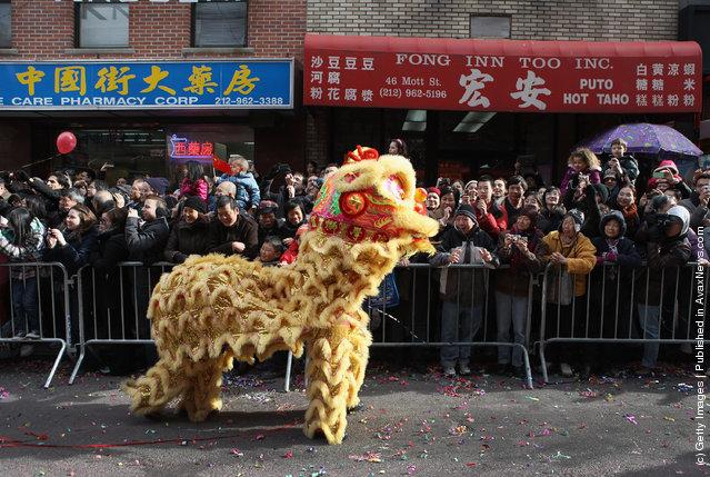 New York's Chinatown Holds Chinese New Years Parade
